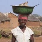 Awabu carrying a load